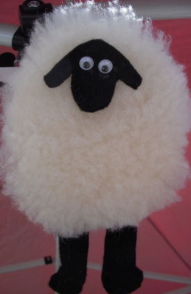 P and B sheep